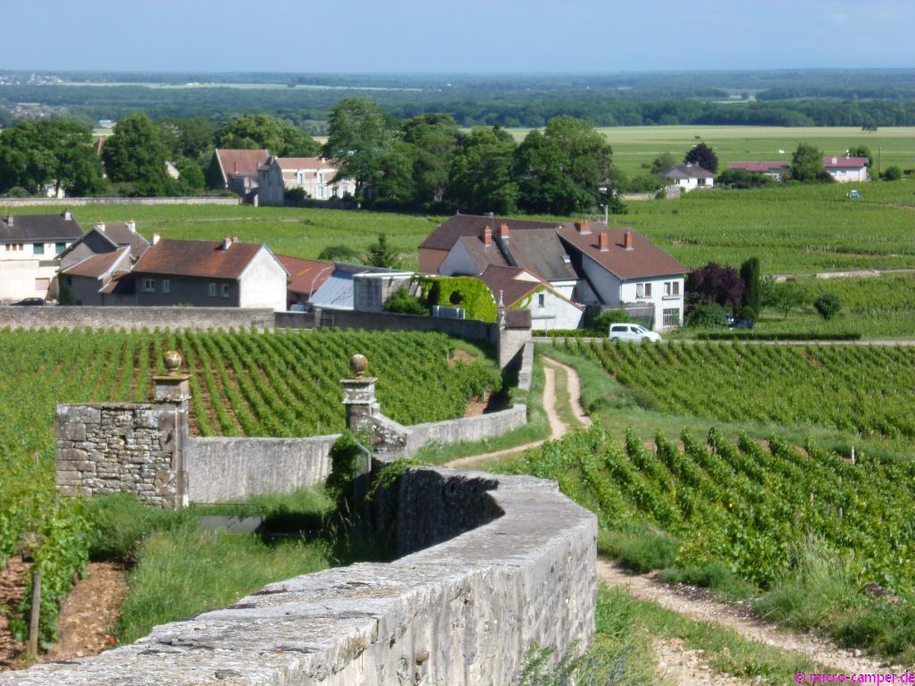In Gevrey-Chambertin wachsen einige der besten Weine Burgunds